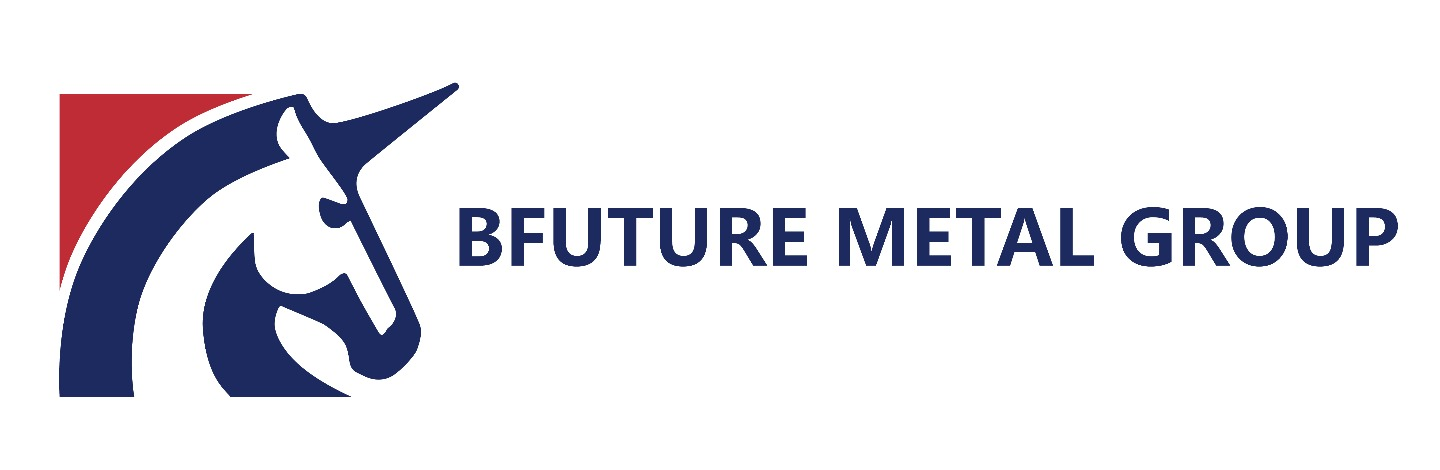 Bfuture Metal Group Limited Ta - Banner